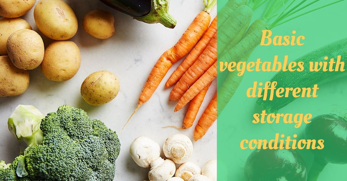 Basic vegetables with different storage conditions